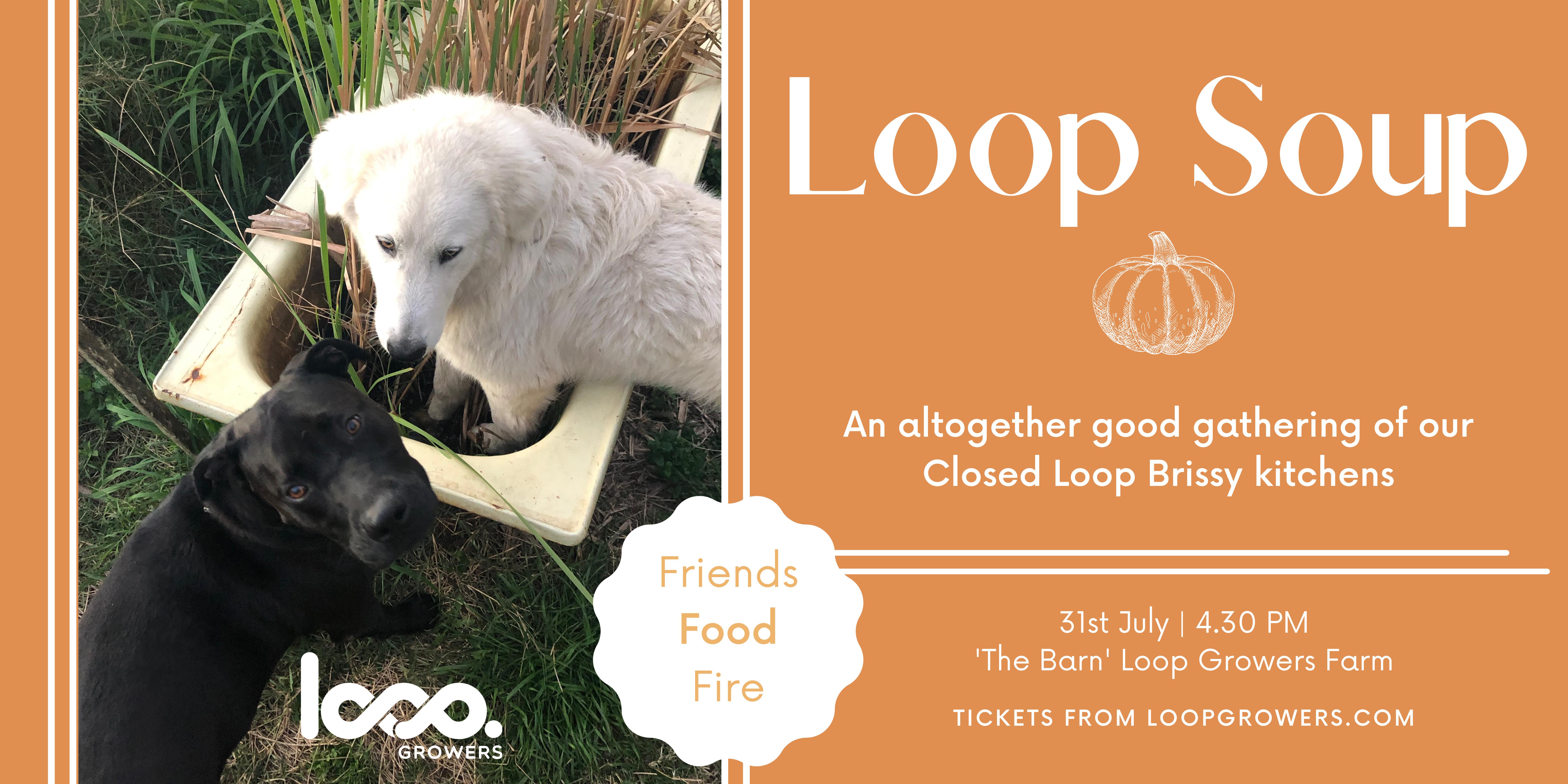 Loop Soup-2